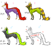 Weird things adopts by eco226