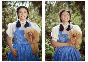 The Wizard of OZ -  Dorothy Gale 2 by Raskolnikova-Sonya