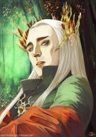 -Thranduil- by obsceneblue