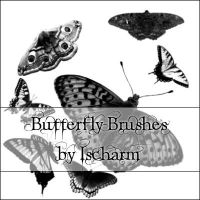 Ischarm Butterfly Brushes by ischarm