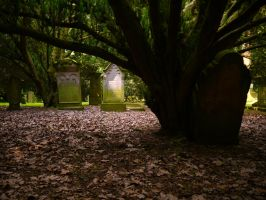 Old Forest Cemetery 2012 15 by Dragoroth-stock