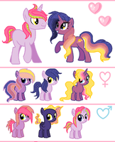 Beautiful Sunset Breedable (ADOPTS OPEN) by SugarMoonPonyArtist