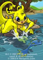 Yellow Zafara card - Neopets by shoomlah