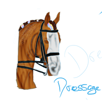 Flossy Dressage by CrazyBrit88