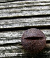 Rusted Screw by shawn529