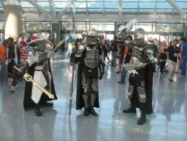 Anime Expo 2013 28 by iancinerate