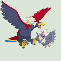 Pokemon Base 76~Rufflet Evolution~ by Xbox-DS-Gameboy