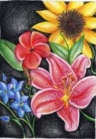 colored pencil by fayelo
