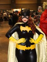 Batgirl, a little smug are we? by stitchesandsongbirds