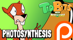 TidBits 102 - Photosynthesis by andrewk