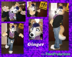 Ginger the sheltie partial by PlushiePaws