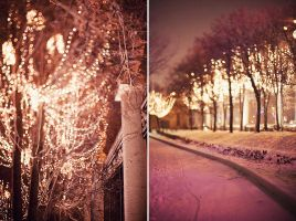 Christmas Lights by Lucem