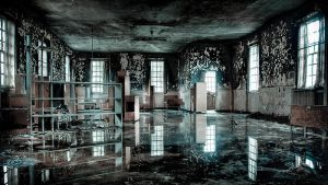 Urbex - West Park Asylum 6 by mrk