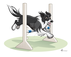 Border Collie Caricature by timmcfarlin