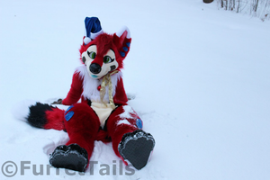 Snow and Bliss 2013 by FurretTails