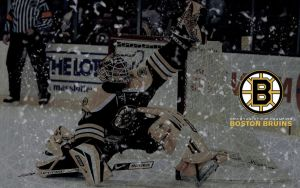 Boston Bruins: 2011 Stanley Cup Champions by Mrfletch1000