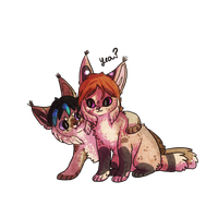 Lynx buddies by Magicpawed