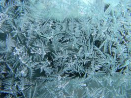 Ice on my Car Window 2 by RBrownKreationz