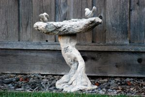 Bird Bath-Stock by Thorvold-Stock