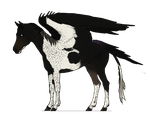 Equus Avis, ID#00142 by hh-harley