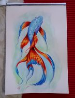 Watercolour fish by EmiliaPaw5