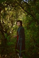 Frodo Baggins. Dark Forest by NellMcGooffin