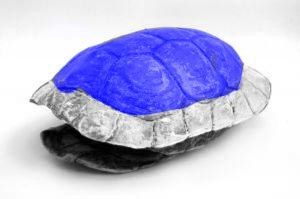 Real Blue Shell by DAFORCEFilms