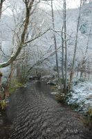 Snowy Forest River Stock by BirdsistersStock