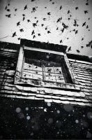 The Swarm by Cryel