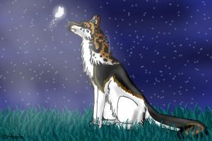 WOI Entry by Aeyote