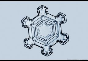 Snowflake Structure by FramedByNature
