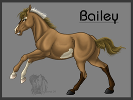 Bailey by Dreams-Horses