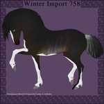Nordanner Winter Import 758 by DemiWolfe