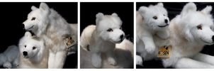 Kosen Arctic Wolf Family I by The-Toy-Chest