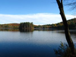 Burnt Meadow Pond in fall 08 3 by crazygardener
