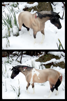 Breyer - Winter Foraging by The-Toy-Chest
