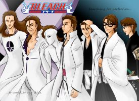 Aizen's evolution by Fidjie