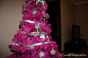 Is Christmas time by SmileyDignam
