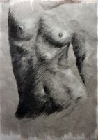 Nude by RutePascoal