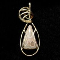 Fossil Coral Pendant in Gold 2 by innerdiameter