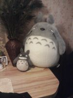Totoro and Peacock feathers 2 by BelieverInTheUnknown