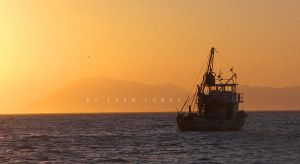 Fisherman's by iremtural