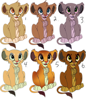 Point Adoptable Cubs PRICE REDUCED by Katterson