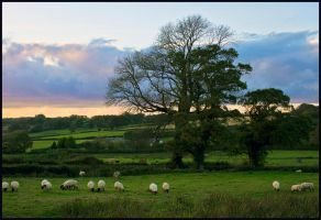 Pastoral Evening by sags