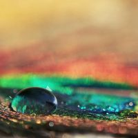 waterdrop by Megson
