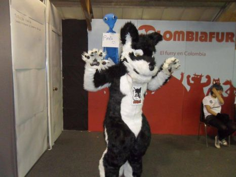 Chriss Full Fursuit by Chriss64