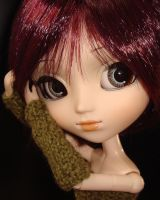 Mittens 2 for Pullip by kivrin82