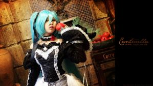 Come, Capture Me: Cantarella Miku by kuricurry