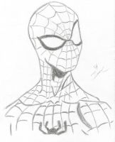 Spiderman by princederek