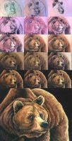 Walktrough soft pastels - bear portrait by Bisanti